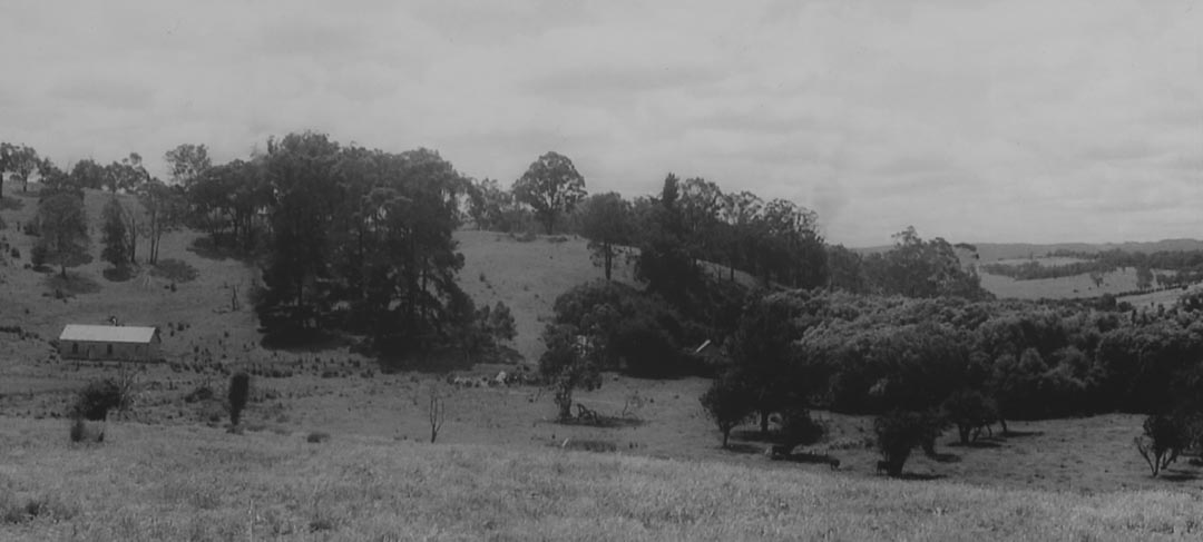 The 'Charnwood' estate in 1972, showing the overgrown garden and remnant orchards on the original homestead block