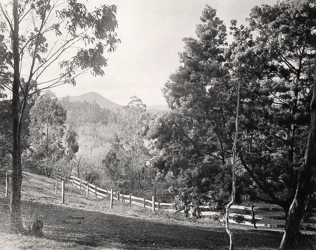 Historic view across 'Charnwood' and the Running Creek valley to Mt. Sugarloaf