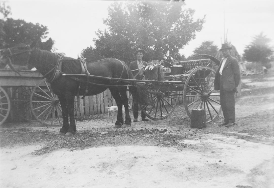 Baskets of fruit being loaded into a horse drawn conveyance, Arthurs Creek district