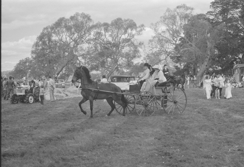 My father, Jim Chester Draper was one of the organisers of the Back to Yan Yean Celebrations. The buggy (or carriage) was from Chester and Beatrice Draper's Yan Yean property, 'Maranui'.  Back to Yan Yean Celebrations, 7th and 8th October, 1978.  Photo credit State Library of Victoria