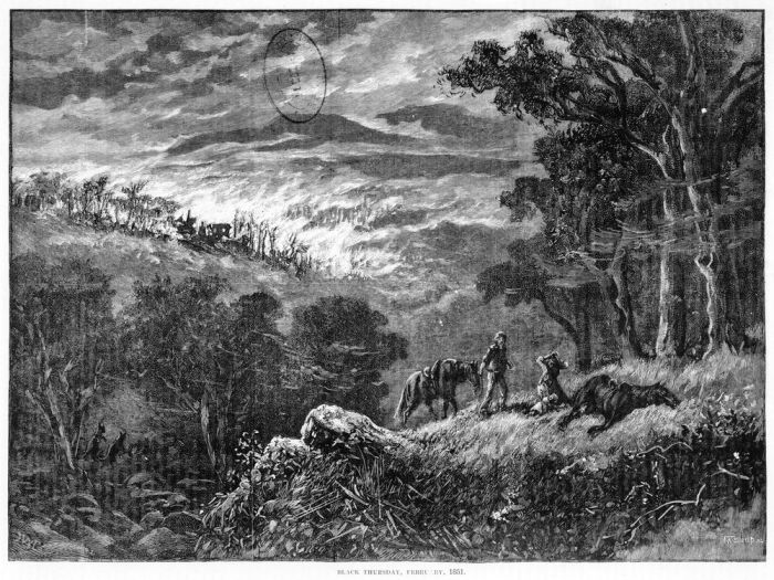 Richard and Bridget McLelland's hut near the headwaters of the north branch of the Diamond Creek (Arthurs Creek), was burnt in the disastrous bush fires of Black Thursday, February 6, 1851, with the tragic loss of Bridget and the couple's five children.  Image engraved by F. A. Sleap. Credit State Library of Victoria