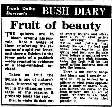 The Argus, 6 Oct 1950, Frank Dalby Davison's BUSH DIARY: Fruit of beauty.  In his writings, Frank Dalby Davison referred to Arthurs Creek as Lintonvale.  For the 1983 Australian film of Frank Dalby Davison's Dusty, the Lobb family, now in Romsey provided their farm and kitchen for filming