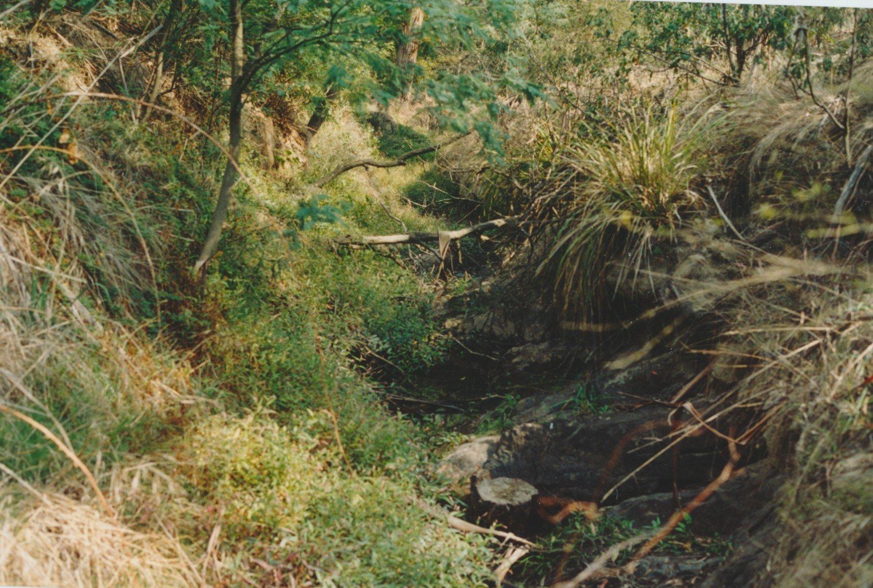 The Arthurs Creek below the site of the Shepherd's Hut, 2003
