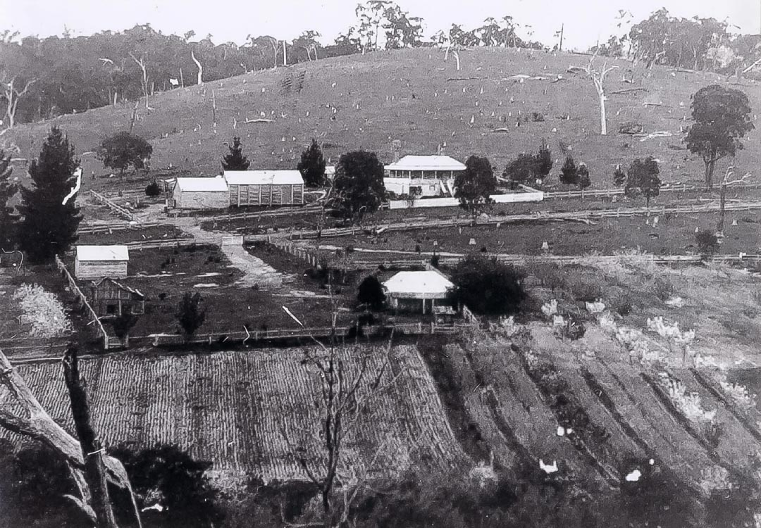 Robert Hempel's farm c 1900.  Now part of 'Glen Ard' orchards