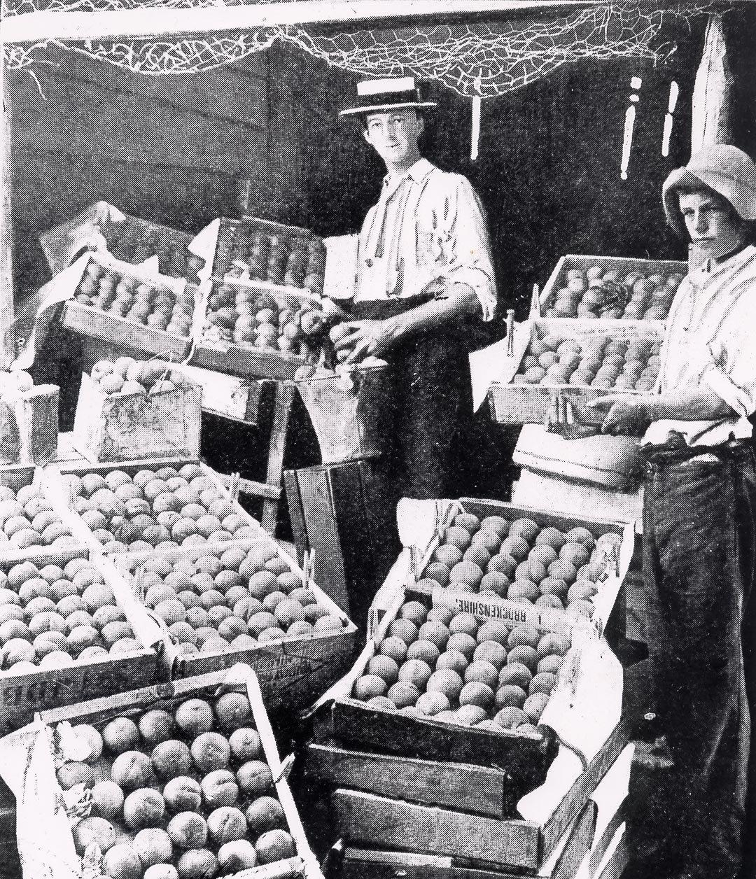 Arthurs Creek Fruit Growers c 1895