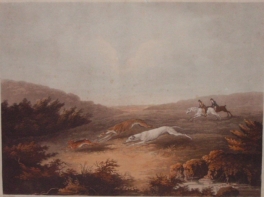 Well-known thoroughbred horses owned or leased by John Ryder, included Peter Wilkins, Whalebone, Zanga, Glen Arthur and Duchess. Coursing with greyhounds and hares grew in popularity during the 19th century. Coursing Clubs were formed throughout the Colony including such places as Arthurs Creek. Artist: Dean Wolstenholme. Engraver: Richard Reeve