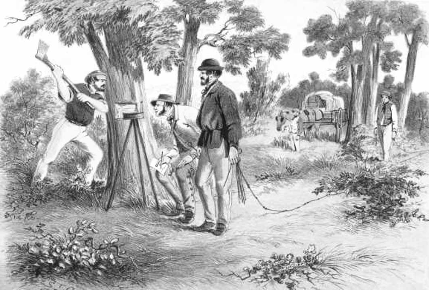 The selection acts of the 1860s were the result of pressure to unlock the land held by the squatters. The acts encouraged closer settlement and increased agricultural production, by allowing former leaseholders and settlers of limited means to locate themselves on land which they could call their own.  Image credit S.T. Gill, 1865, National Library of Australia